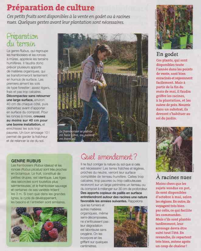 au jardin - Page 12 6a21