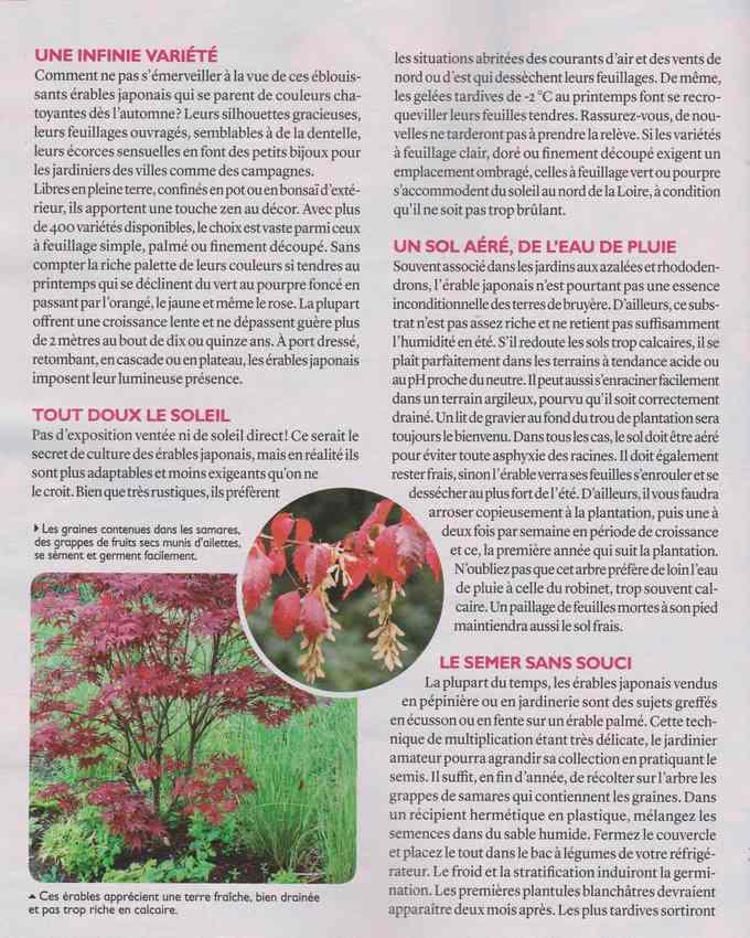au jardin - Page 2 6aa10