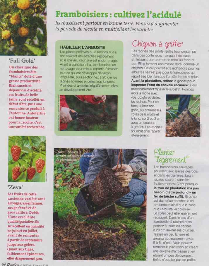 au jardin - Page 12 6b16