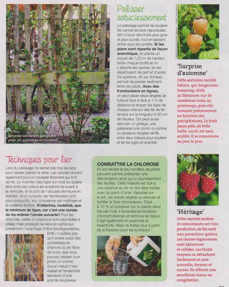 au jardin - Page 12 6c13