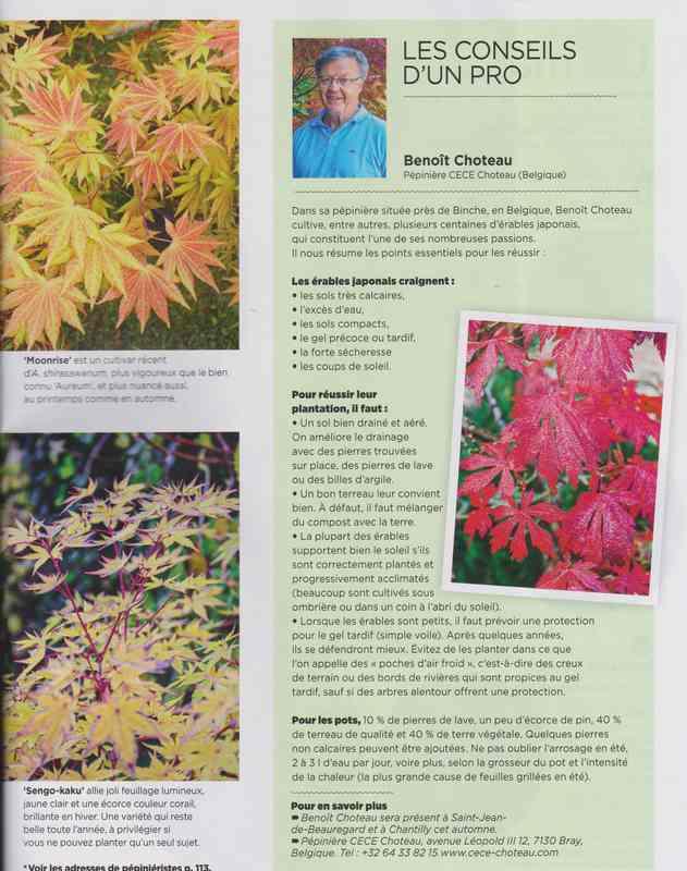 au jardin - Page 2 6f11