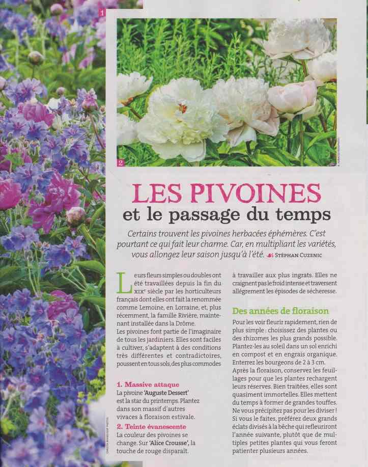 au jardin - Page 18 728