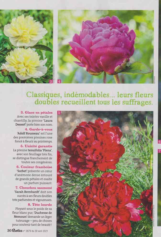 au jardin - Page 18 7a22
