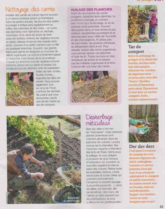 au jardin - Page 3 7b11