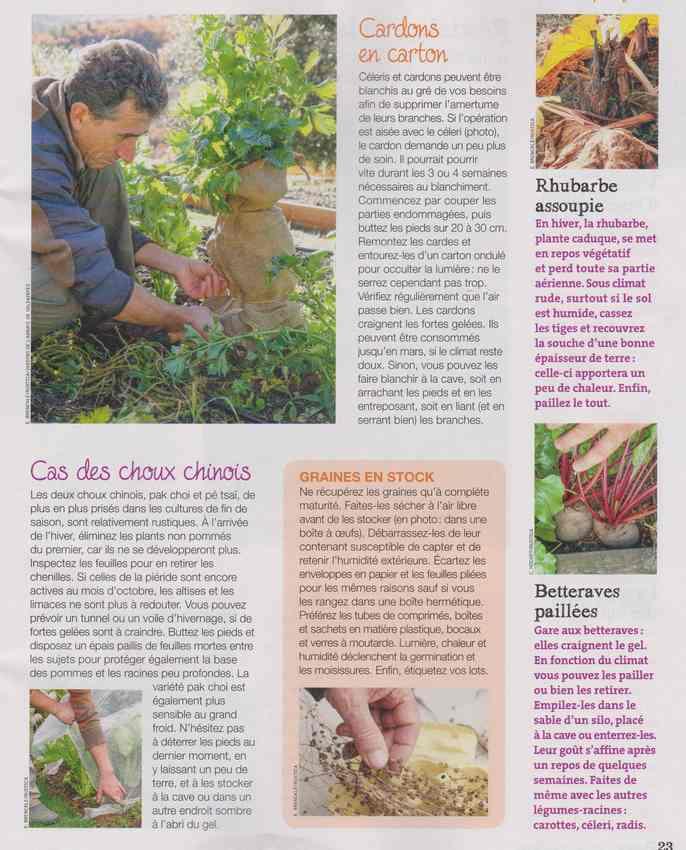 au jardin - Page 3 7d10