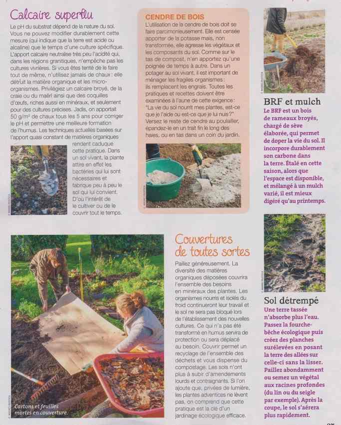 au jardin - Page 3 7h10