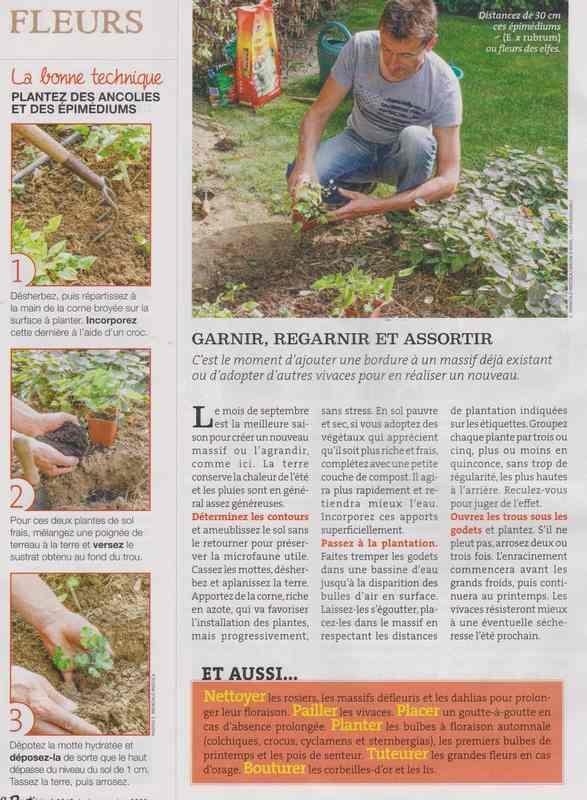 au jardin - Page 42 816