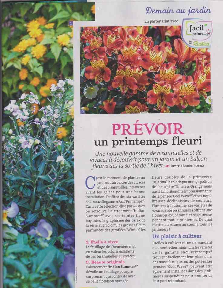 au jardin - Page 29 929
