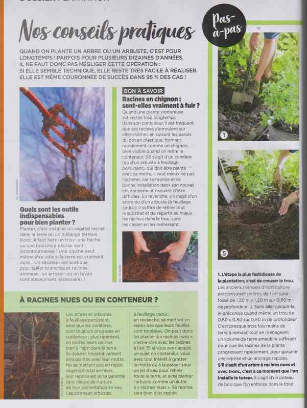 au jardin - Page 6 9a13