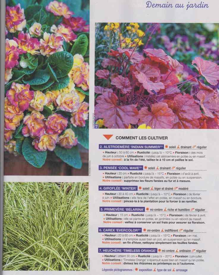 au jardin - Page 29 9b16