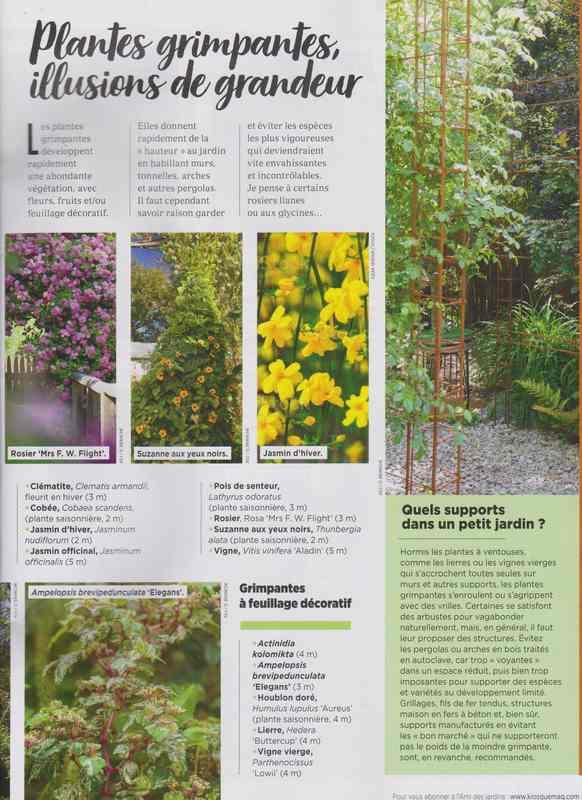 au jardin - Page 6 9d10