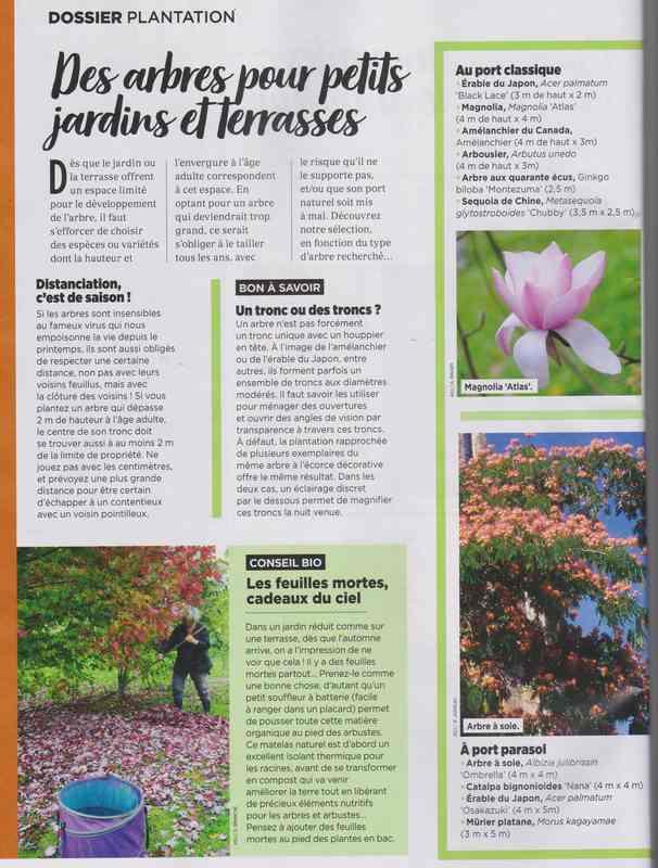 au jardin - Page 6 9e10