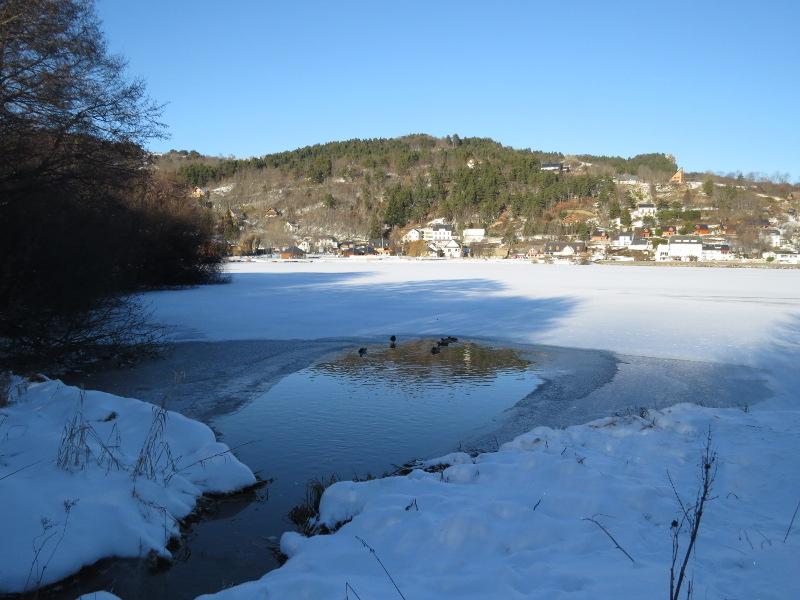 Le Lac Chambon sous la glace 12_20_10
