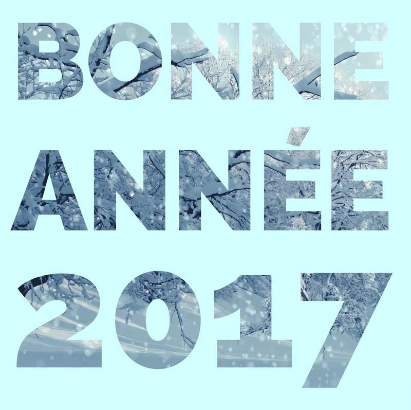 Une trés bonne année à vous tous ! Bonn10
