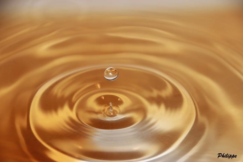 Gouttes d'eau 1_6a_810