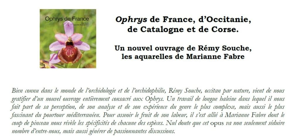"""Le nouveau """"Souche"""" Ofocc10"""