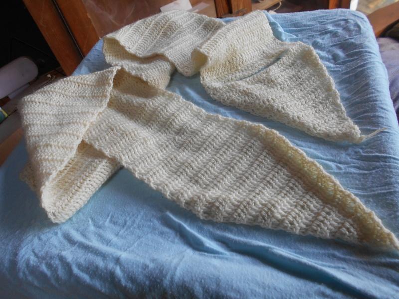 Crochet de Maia - Page 15 Dscn0515
