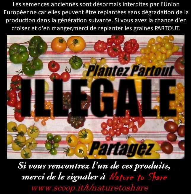 LA GUERRE DES GRAINES EST DÉCLARÉE 39425411