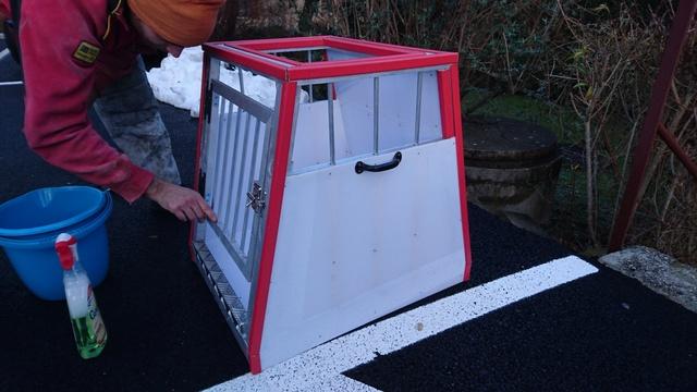 Transport en voiture des chiens et chats - Page 8 Dsc_0011