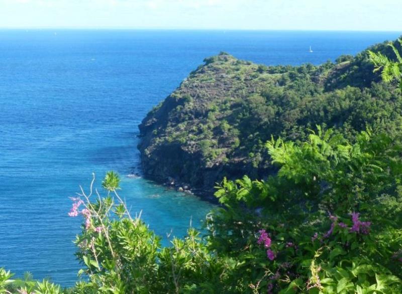 Lipette : Voyage en Guadeloupe 27a10