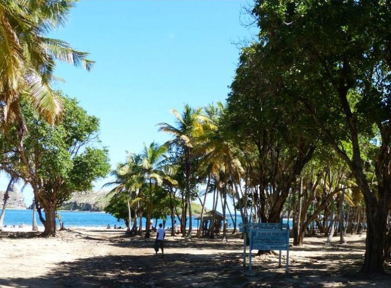 Lipette : Voyage en Guadeloupe 76a10