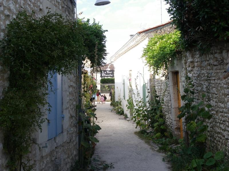 Talmont sur Gironde Imgp0615