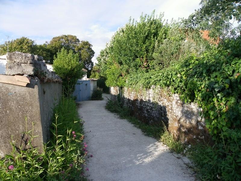 Talmont sur Gironde Imgp0618