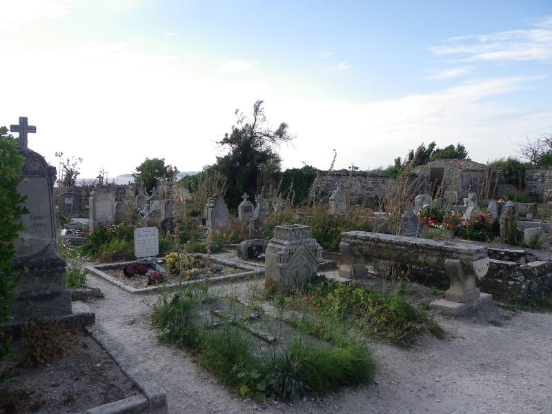 Talmont sur Gironde Imgp0625