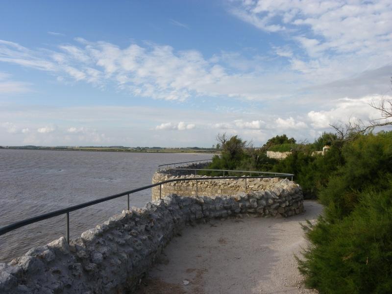 Talmont sur Gironde Imgp0628