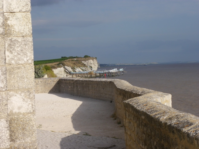 Talmont sur Gironde Imgp0630