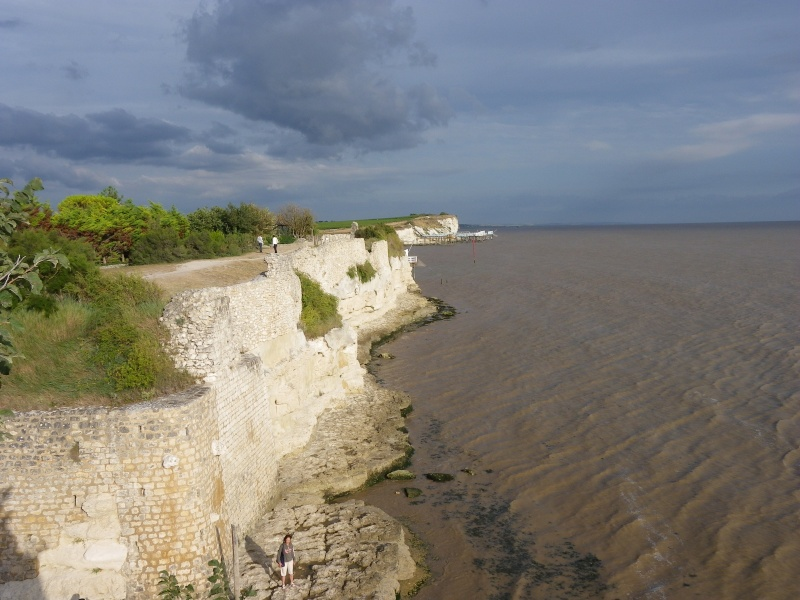 Talmont sur Gironde Imgp0633