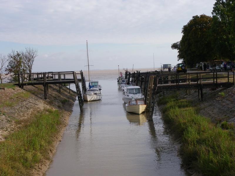 Talmont sur Gironde Imgp0638