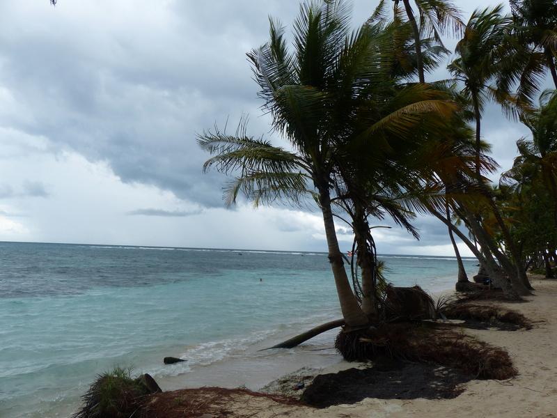 Lipette : Voyage en Guadeloupe P1450518