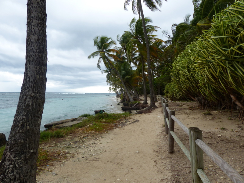 Lipette : Voyage en Guadeloupe P1450519