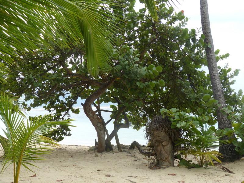 Lipette : Voyage en Guadeloupe P1450533