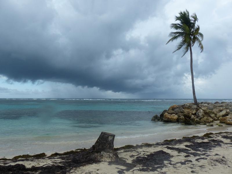 Lipette : Voyage en Guadeloupe P1450536
