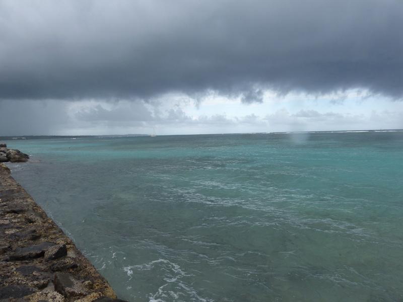 Lipette : Voyage en Guadeloupe P1450537