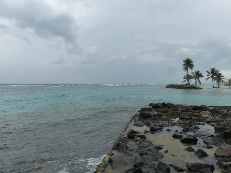 Lipette : Voyage en Guadeloupe P1450538