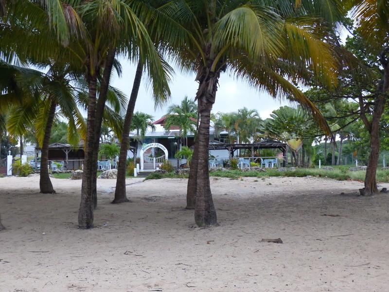 Lipette : Voyage en Guadeloupe P1450548