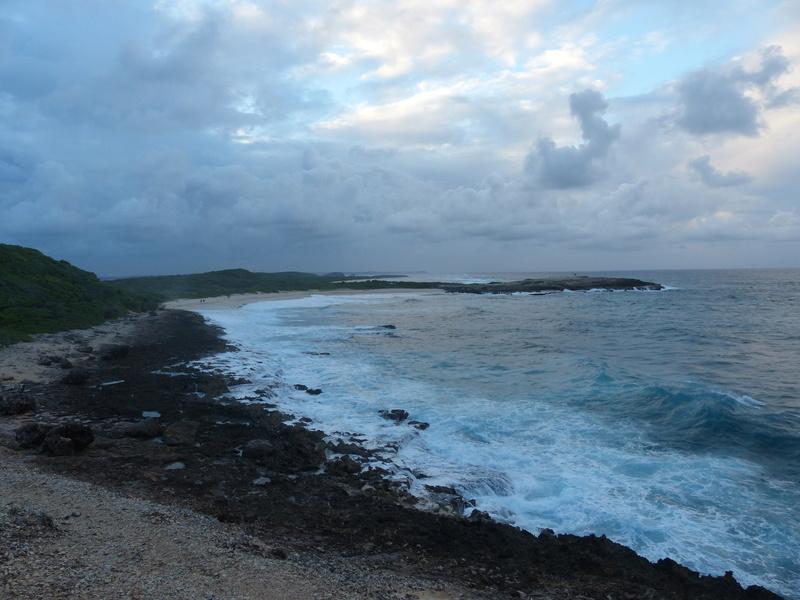 Lipette : Voyage en Guadeloupe P1450573