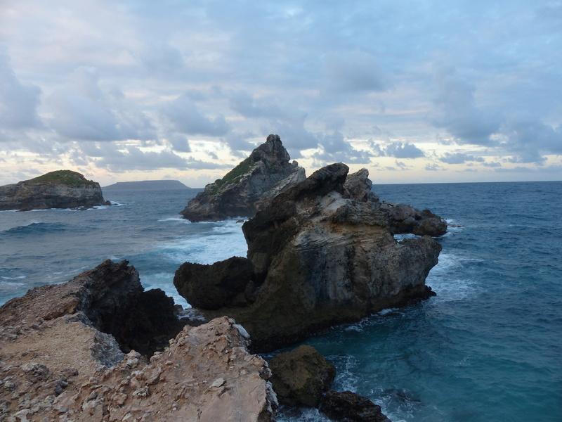 Lipette : Voyage en Guadeloupe P1450575