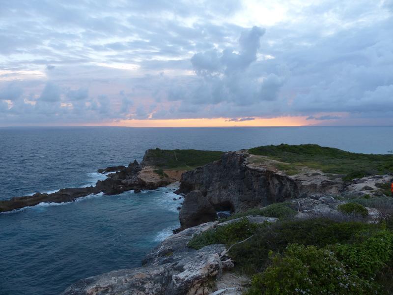 Lipette : Voyage en Guadeloupe P1450576