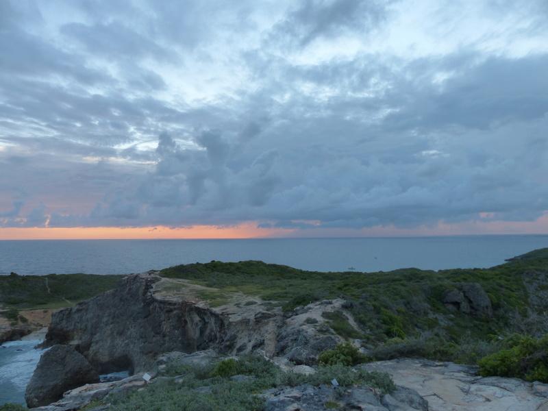 Lipette : Voyage en Guadeloupe P1450578