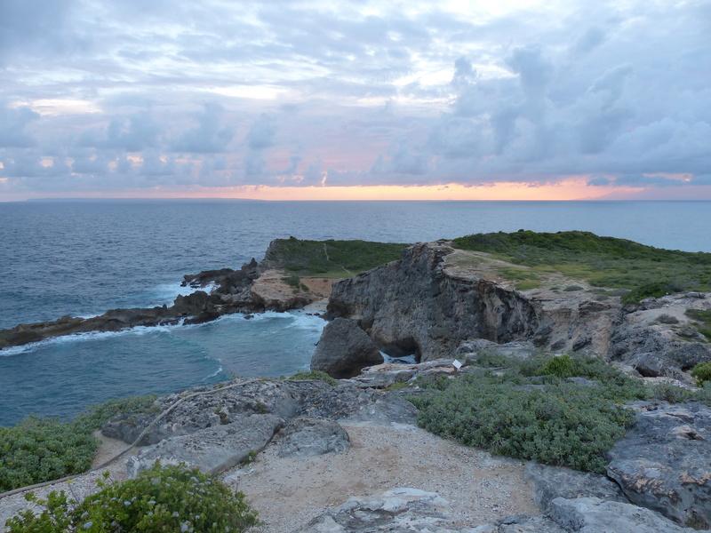 Lipette : Voyage en Guadeloupe P1450579
