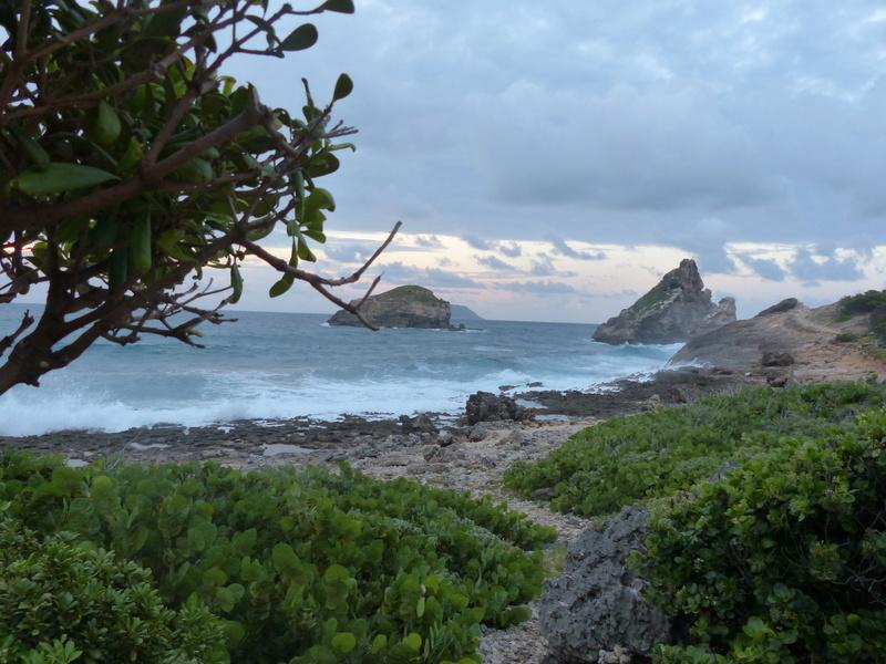 Lipette : Voyage en Guadeloupe P1450613