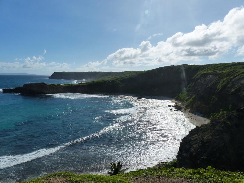 Lipette : Voyage en Guadeloupe P1450619