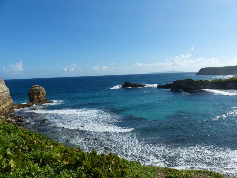 Lipette : Voyage en Guadeloupe P1450620