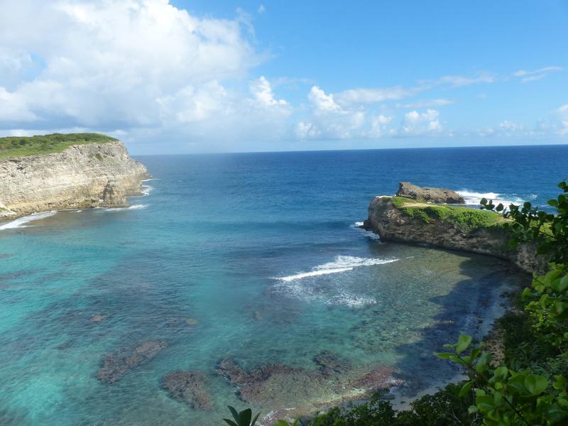 Lipette : Voyage en Guadeloupe P1450621