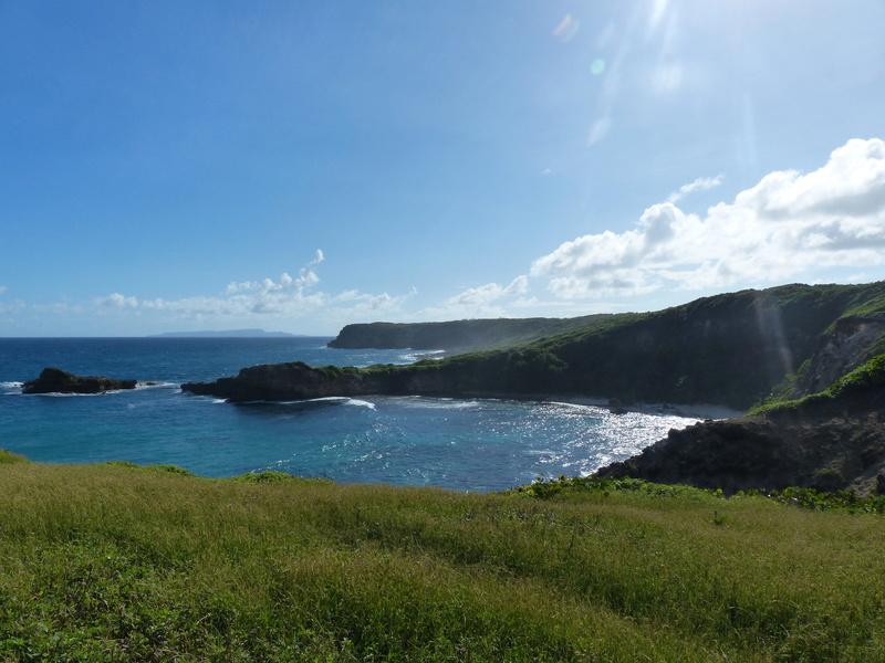 Lipette : Voyage en Guadeloupe P1450622