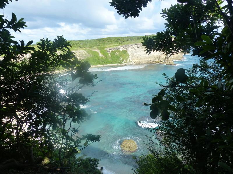 Lipette : Voyage en Guadeloupe P1450624